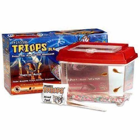 triassic triops kit instructions