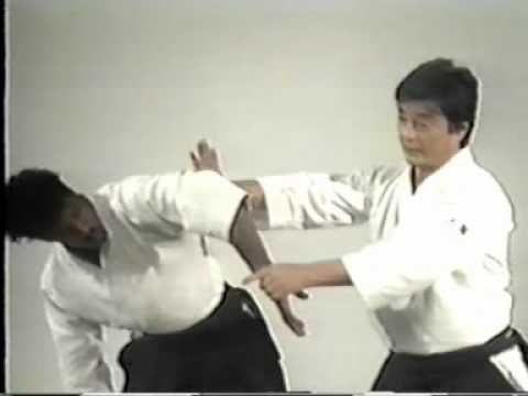 martial arts instructional videos