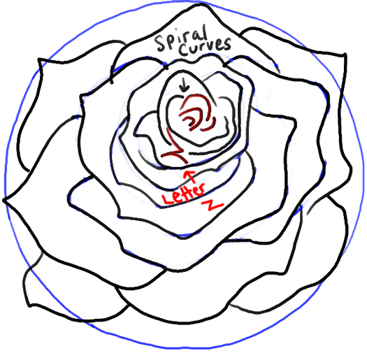 step by step instructions on how to draw a rose